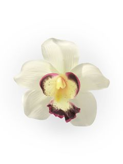Orchid Pinup Hair Clip Ivory