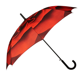 Red Rose Umbrella